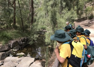 Year 3/4 Excursion – Schwerkolt Cottage and Museum Complex, Yarran Dheran Visitor Centre and Yarran Dheran Walk